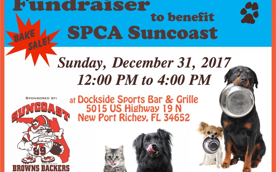 FUNDRAISER to benefit the SPCA SUNCOAST, Sunday, Dec. 31st