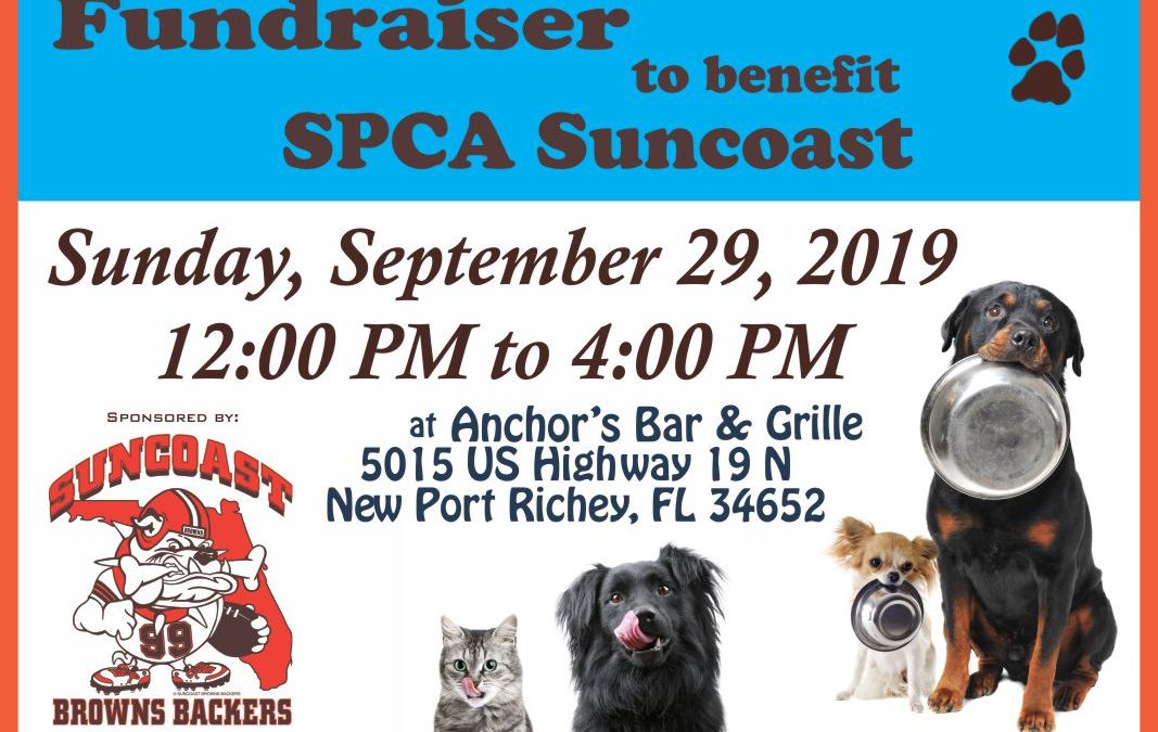 Food/Fundraiser for SPCA Suncoast, Sept. 29th