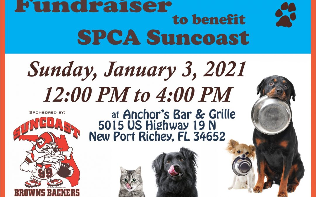 Fundraiser for the SPCA Suncoast – Sunday, Jan. 3rd