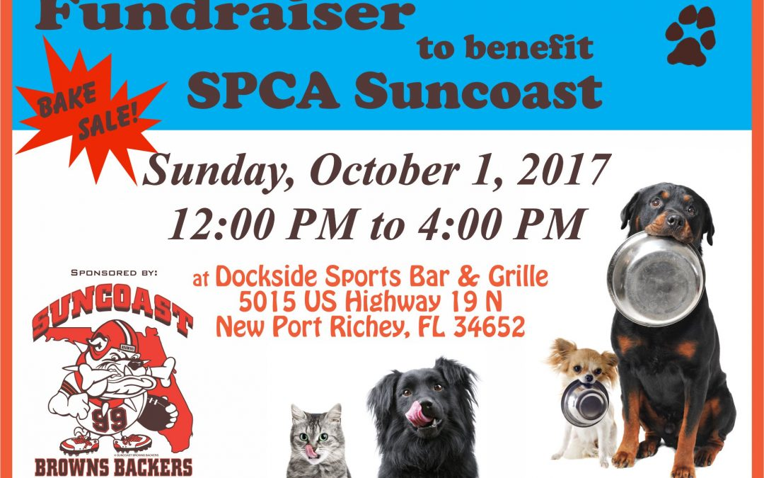 Fundraiser to Benefit the SPCA Suncoast – October 1st